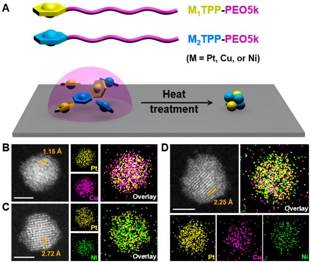 神奇鏈端功能化聚合物,用於精準制備<2 nm的納米簇陣列