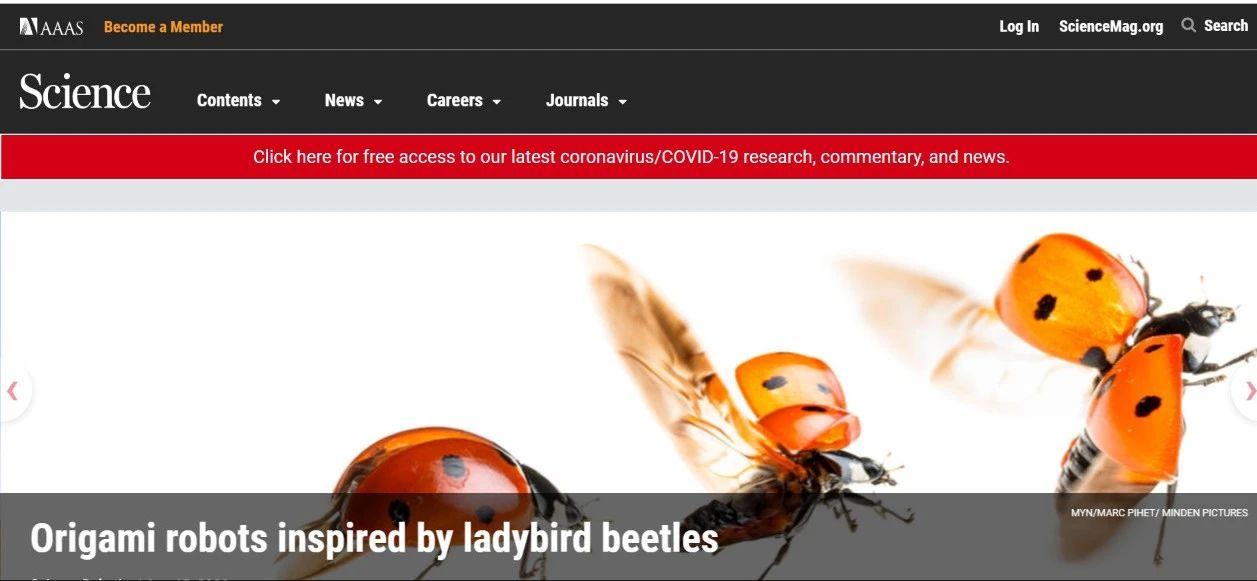 瓢虫机器人登上《Science》头条!未来可进行搜索侦查等任务