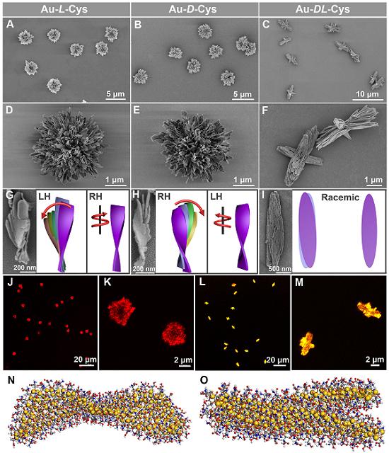 超越自然!人工制备高度复杂纳米结构取得重要进展