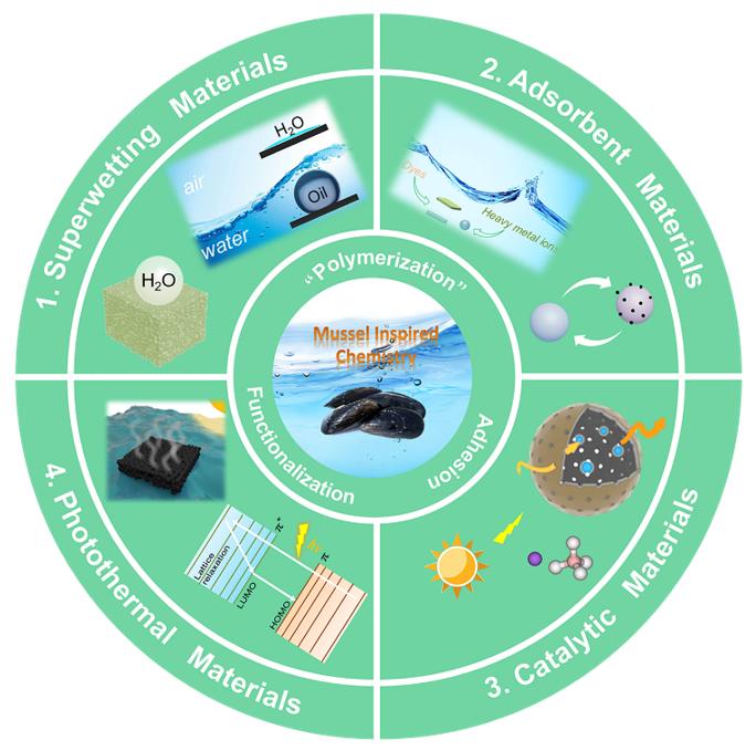 南昌大学王振兴博士、李越湘教授在贻贝仿生表/界面改性及其在水处理领域研究取得系列进展