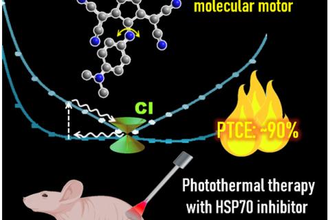 南方科技大学李凯团队《德国应用化学》: 具有超高光热转换效率的小分子光热剂