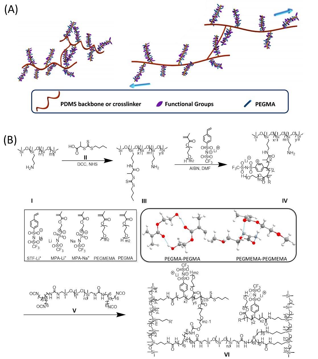 分子尺度可拉伸單離子聚合物電解質