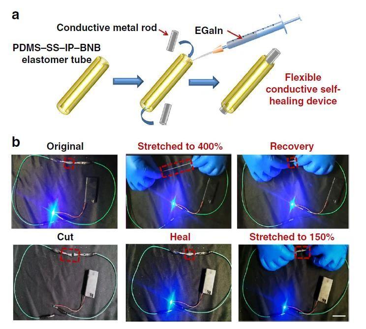 高度可拉伸自修复弹性体,可在各种极端条件下实现自修复