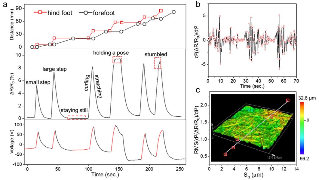 集運動、感知功能為一體的光驅動薄膜機器人