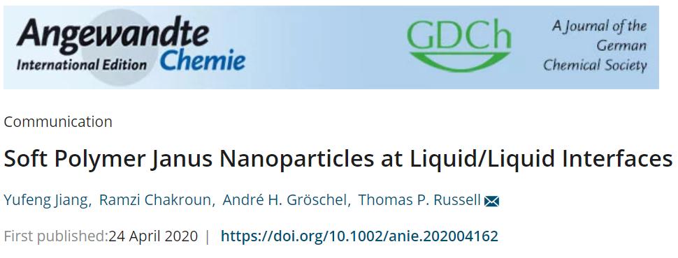 液/液界面处的柔性聚合物Janus纳米颗粒