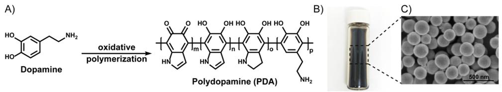 科學傢發明溫和的染發劑:用合成黑色素模仿自然頭發色素沉積
