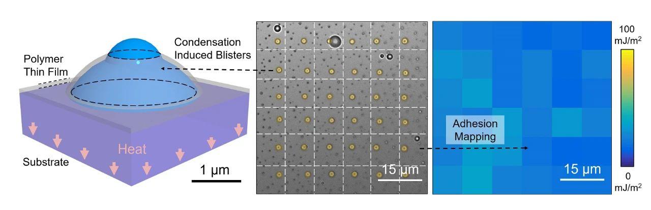 测量高分子镀层在微纳尺度下的粘附能