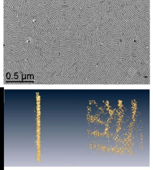 均聚多肽也能引导纳米粒子自组装