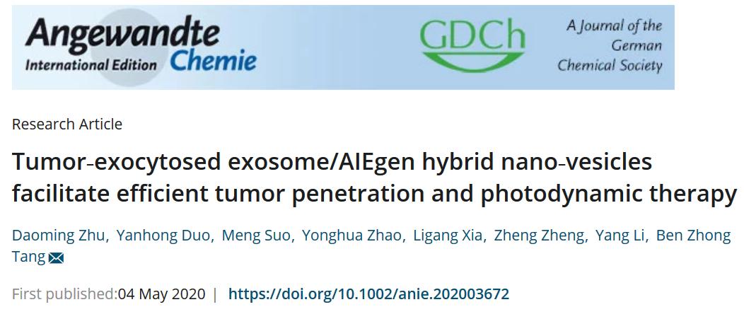 腫瘤胞吐小體/AIEgen雜化納米囊泡,促進腫瘤滲透和光動力治療