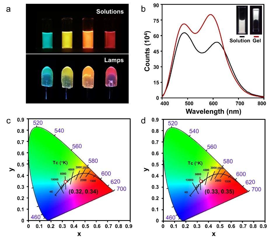 AIE与FRET的巧妙结合实现增溶位置的纳米级测定