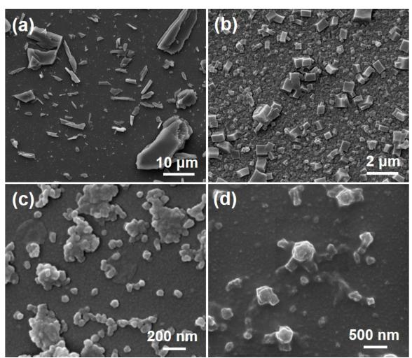 通过超分子配位驱动的自组装技术构建高分子金属-有机纳米胶囊网络