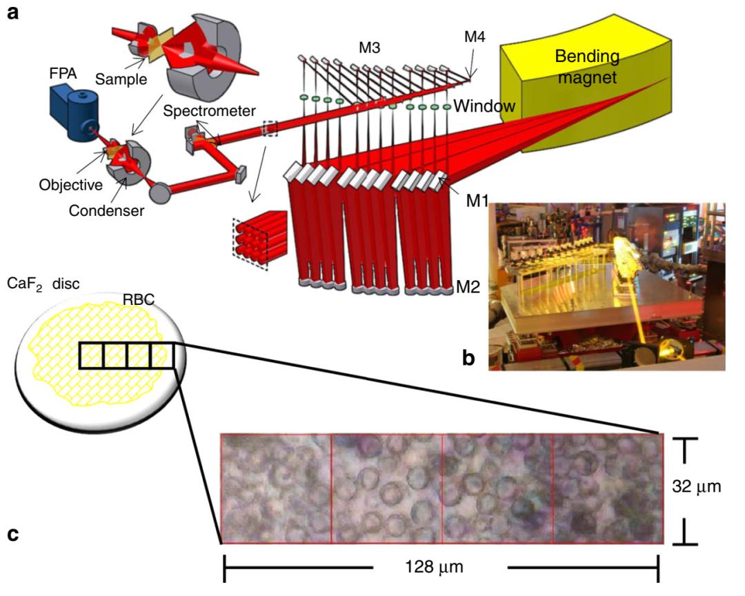 用同步加速器让光固化复合材料微观变化一览无余