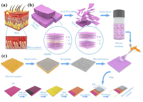 基于仿生微结构的高性能柔性MXene压阻传感器研究进展