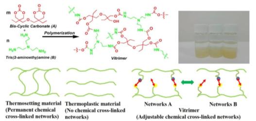 """""""一箭多雕"""":Vitrimers赋予天然多孔生物质基储能材料多功能特性"""