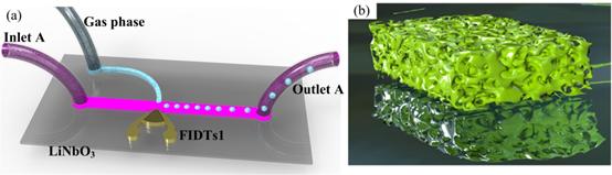 化氣泡為神奇:從聲控聚合物泡沫到三維超疏水孔隙材料的魔力制造
