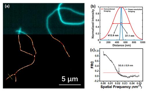 華中科技大學朱明強、李沖團隊:可見光驅動的聚集誘導發光型熒光分子開關及其超分辨成像應用