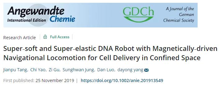 天津大学仰大勇《德国应化》:超软超弹磁驱动导航DNA软体机器人用于受限空间细胞递送