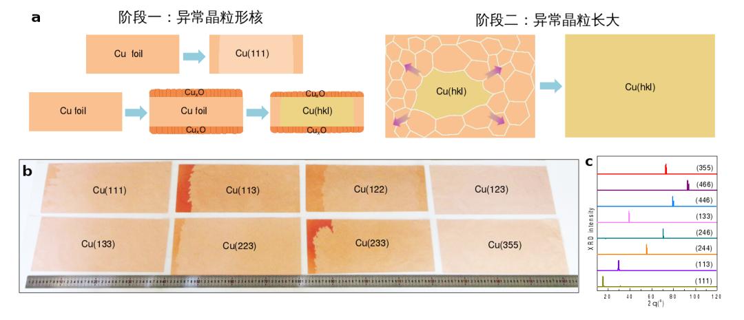 突破!北京大学《Nature》:实现30余种高指数晶面、A4纸尺寸单晶铜箔库制造突破