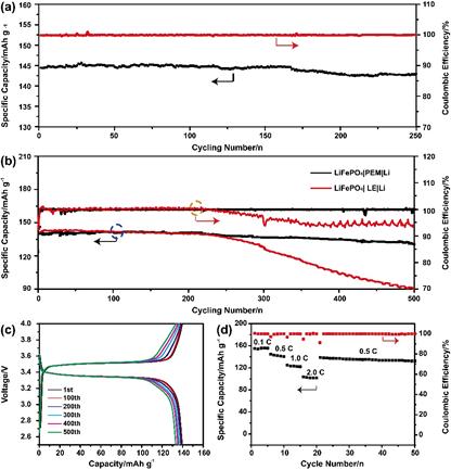 北師大李林教授團隊《ACS AMI》:兼具高離子電導率和界面穩定性的聚合物電解質膜用於金屬鋰電池