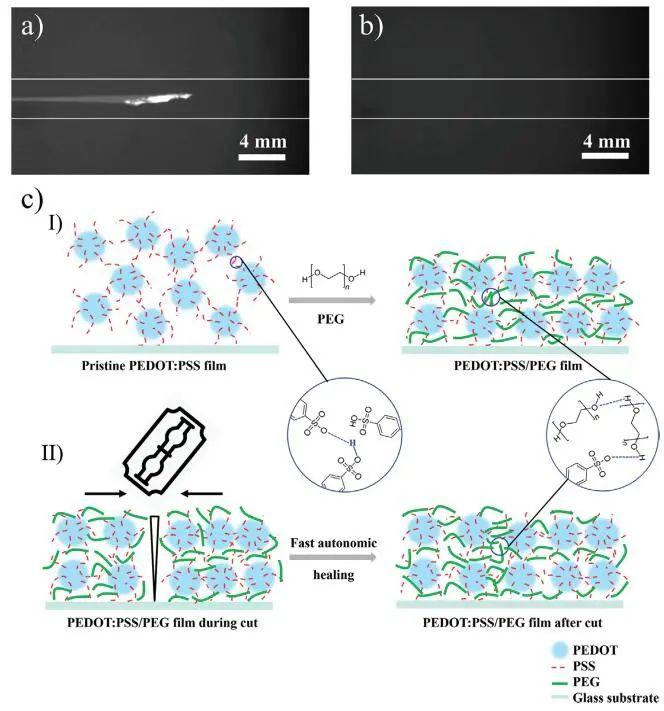 《AFM》:加点PEG,导电高分子实现自修复!