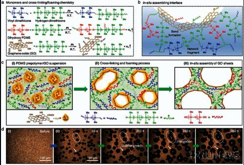 杭州师范大学汤龙程:具有协同阻燃效应的氧化石墨烯反应组装硅橡胶泡沫材料