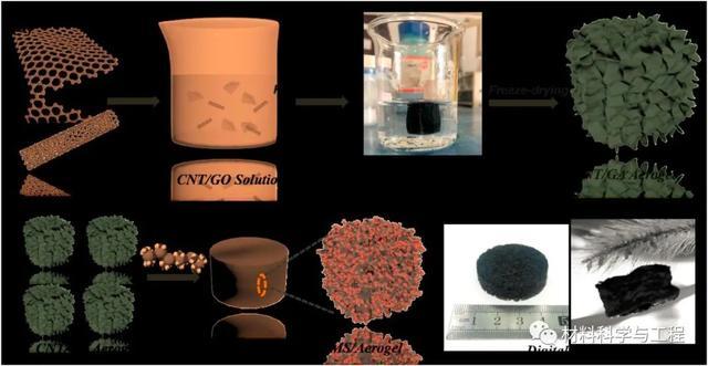 減少電磁輻射!復旦等制備出新型碳納米管/石墨烯氣凝膠!-2