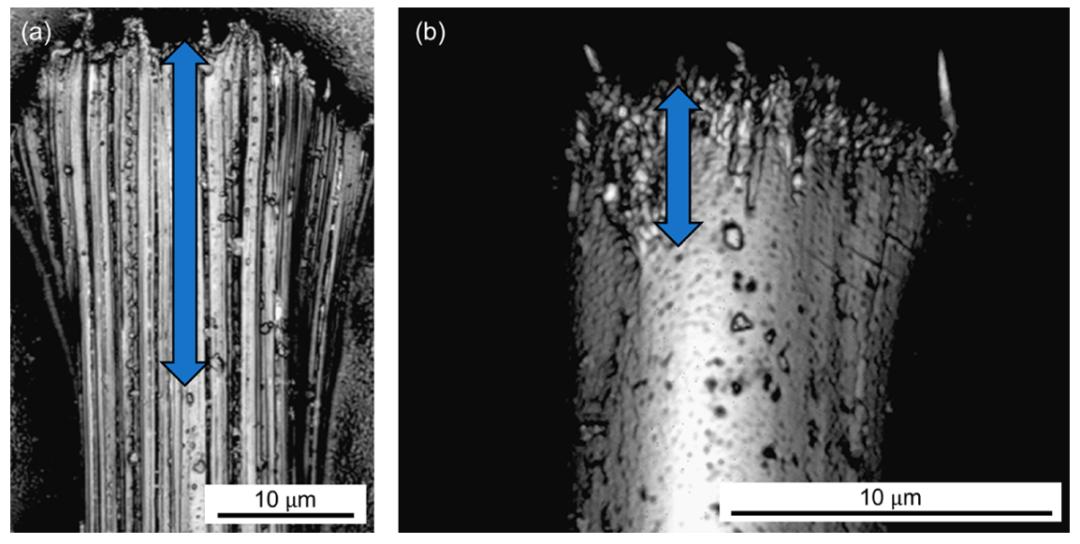 高性能纖維失效研究取得重大突破!