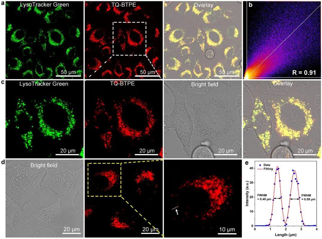 新加坡國立大學劉斌教授團隊:近紅外二區光激發有機光敏劑實現精準高效雙光子光動力治療