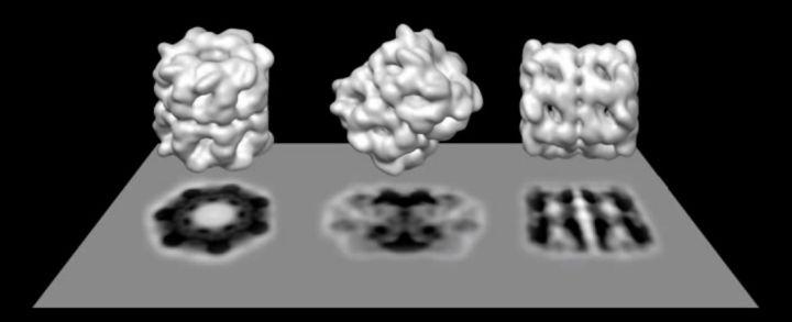 裡程碑,打破冷凍電鏡分辨率記錄,成功觀測到單個原子、化學鍵、化學修飾!一大波CNS在路上?