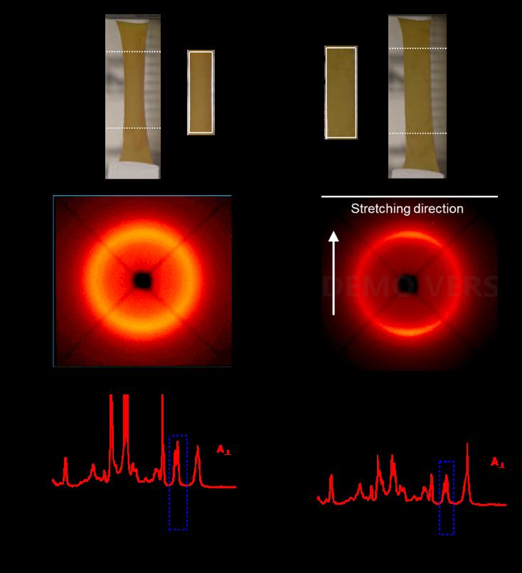 加拿大舍佈魯克大學趙越教授與蘇州大學張偉教授《德國應化》:一種可以實現反常可逆形變的新型液晶彈性體