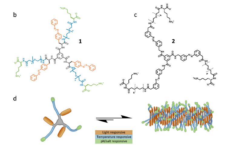 《JACS》單組分超分子聚合物:獨立響應四種刺激