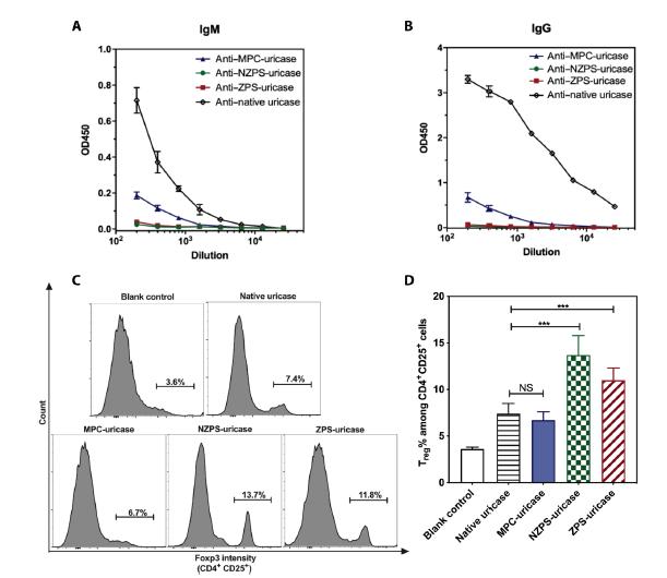江紹毅團隊Science子刊:首次利用兩性離子材料打破抗污性能和免疫調節之間的矛盾