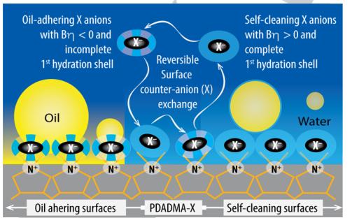 吉林大學汪大洋教授《德國應化》:陰離子水合作用新發現!可用於制備自清潔塗層