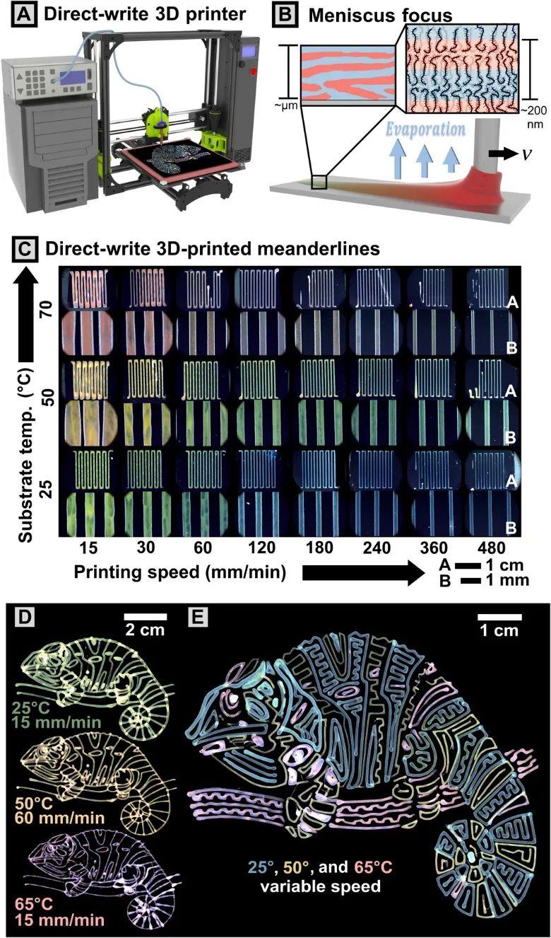 《Science》頭條:3D打印結構色