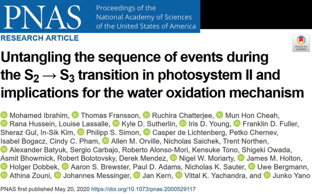 揭秘!光合作用產氧關鍵步驟原來是這樣