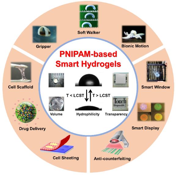 天津大學封偉教授團隊在PMS上全面綜述PNIPAM基智能水凝膠