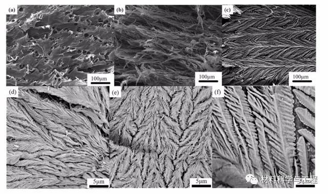圖1. SEM圖(a)Alg氣凝膠,(b)ATM氣凝膠,(c)Alg/ATM氣凝膠,(d)C摻雜MoS2-0.5氣凝膠,(e)C摻雜MoS2-1氣凝膠的SEM圖像(f)C摻雜的MoS2-1.5氣凝膠