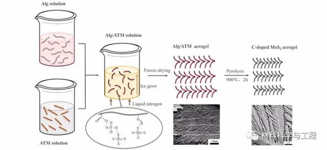 圖2. C摻雜的MoS2氣凝膠的香蕉葉狀形態形成過程的示意圖