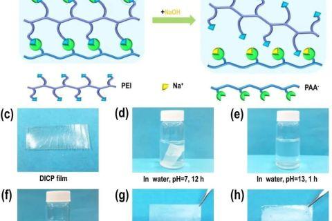 可逆交联聚合物用于高性能可回收锂硫电池粘结剂