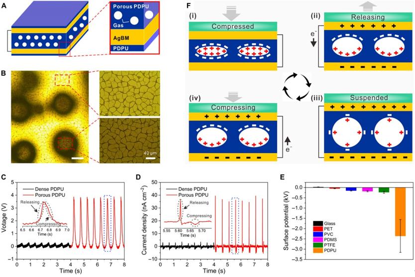 南洋理工大学李佩诗《Science》子刊:摩擦电纳米发电机新机理
