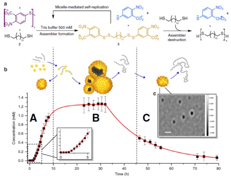 《Nature》子刊:拥有生命的分子组装体!可以生产聚合物