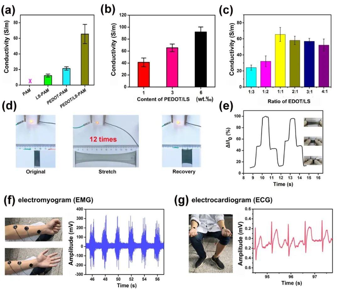 西南交通大学鲁雄团队《纳微快报》:受贻贝启发的氧化还原活性导电聚合物纳米颗粒用于制备导电粘附水凝胶