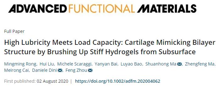 兰州化物所周峰团队《AFM》:仿天然软骨的双层水凝胶实现高负载与低摩擦!