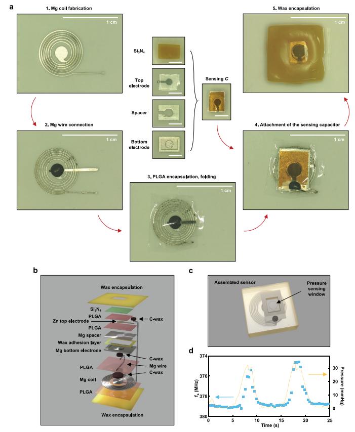 柔性电子大佬/西北大学Rogers团队最新成果:可降解植入式生物传感器