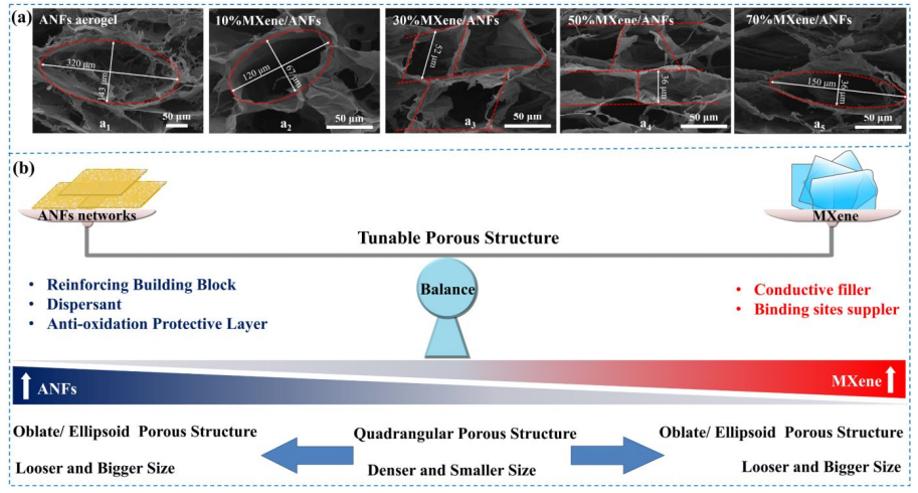Kevlar纳米纤维和MXene再登《ACS Nano》:陕科大张美云团队:高回弹性、耐高温、高灵敏度气凝胶传感器