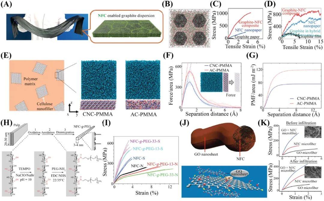 马里兰大学李腾教授/浙大朱书泽教授《AM》综述:基于纤维素的高性能功能材料的力学设计