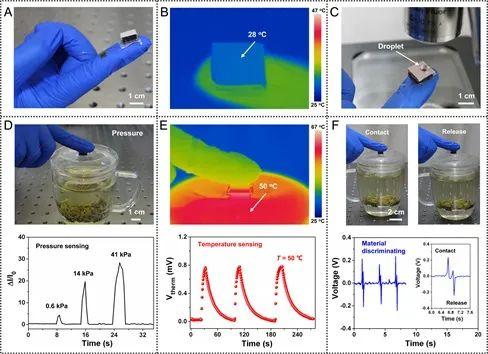 《Science Advances》:柔性多功能触觉传感器