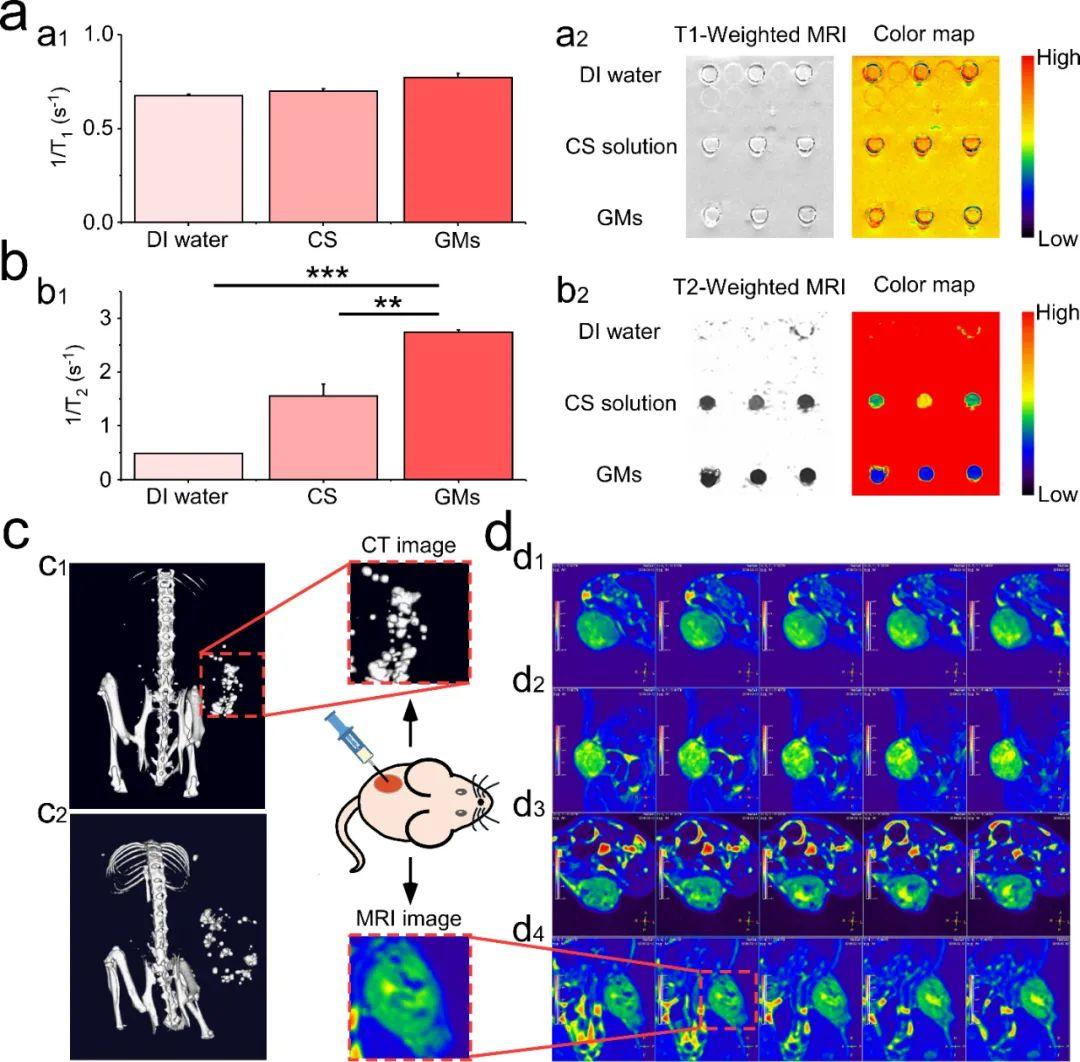 《AFM》:发现液态金属冻结微爆破现象及其增强肿瘤杀伤与MRI-CT双模态成像机制