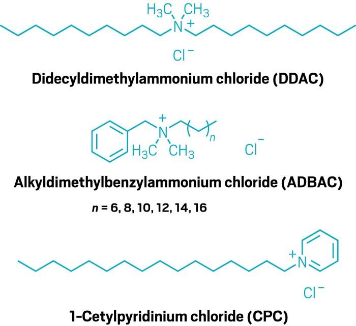 这些消毒剂真的安全吗?  研究表明:季铵盐消毒液会降低小鼠生殖能力、对人类存在健康风险