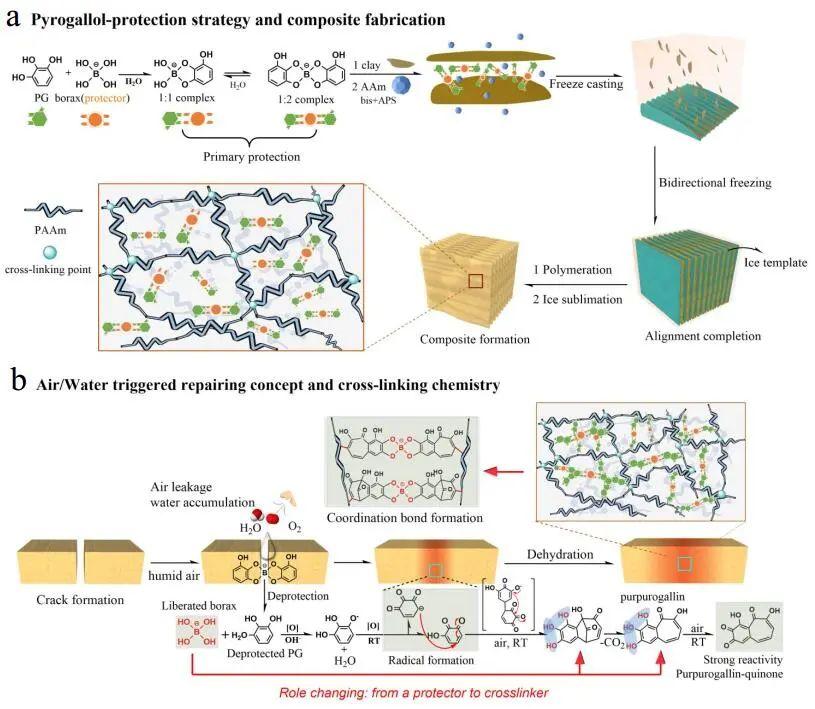 江汉大学曹一平《ACS Nano》:仿生新成果!响应空气-水的复合材料,具有优异的隔热、自修复和自生长能力